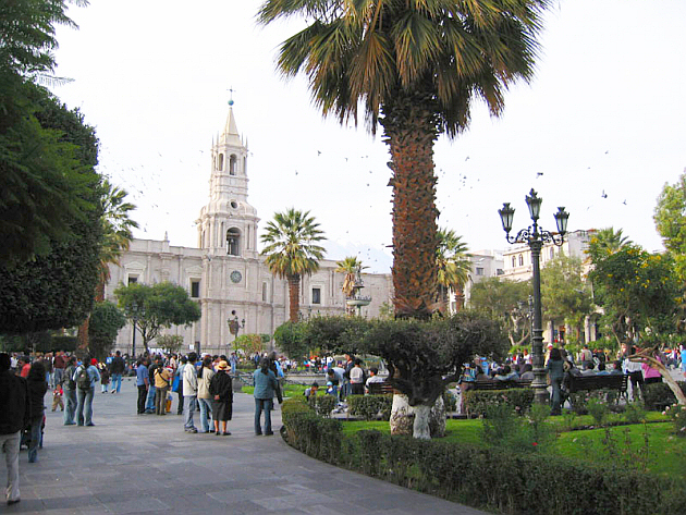 Central Arequipa with the Cathedral and the Palms