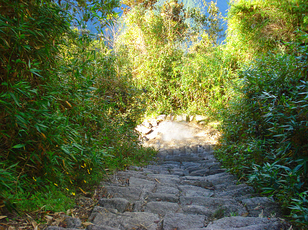 Rock Stairs of the Inca Trail
