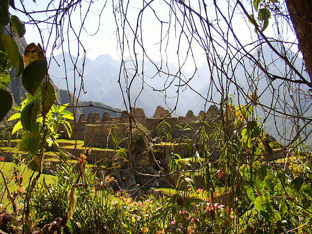 Machu Picchu Behind the Bushes